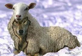 NuevoLoquo, lobas, reales