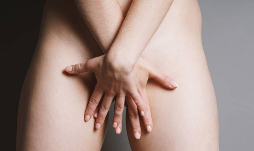 El órgano sexual eréctil femenino
