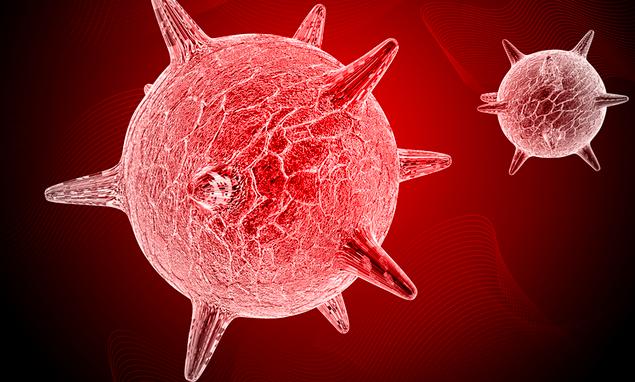 El virus del herpes simple